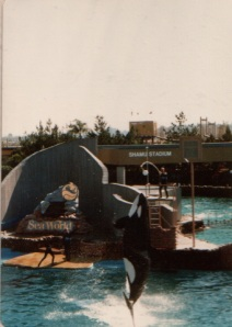 Sea World and Shamu